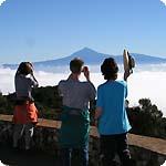 La Gomera Regenwald