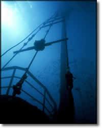 Nautic Dive - Wrack