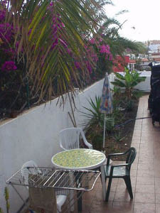 Appartment del Mar 1 SZ auf Fuerteventura in Tarajalejo