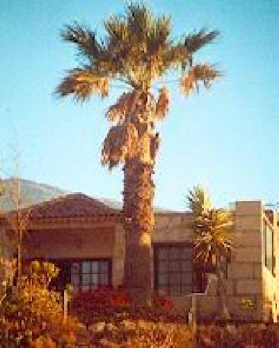 Finca auf Teneriffa Süd Finca Ananda Haus 1 in Las Palomas