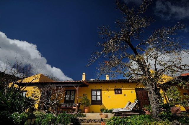 Villa Mandarin auf Teneriffa Nord in Las Rosas