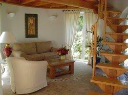 Ferienhaus auf Teneriffa Nord Casa Canellas - El Jardin in Tacoronte