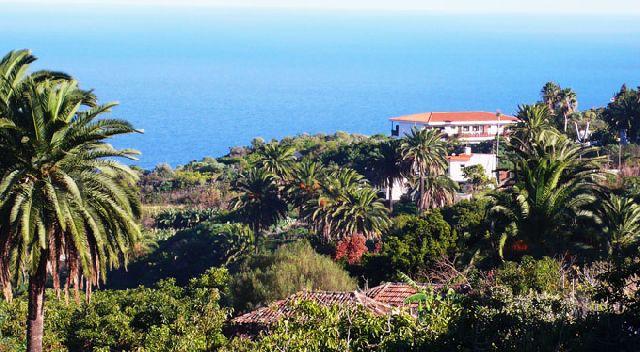 Ferienwohnung Appartmentanlage La Palma - Studios - La Palma