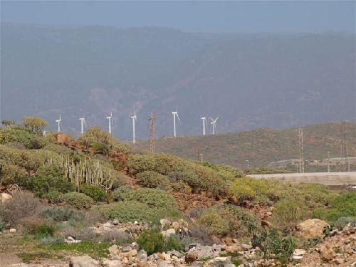 Windpark auf Teneriffa