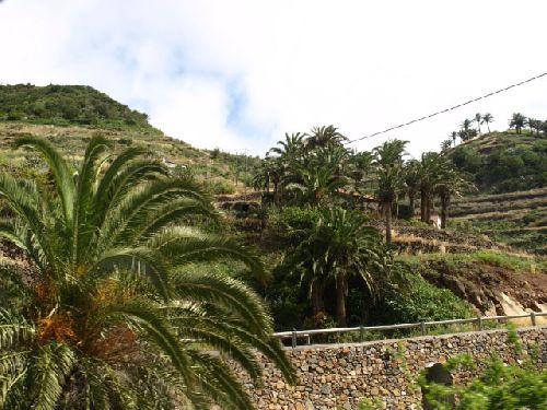 Landschaftsaufnahmen von La Gomera - Bild 49