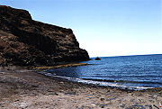 Tauchen auf Fuerteventura - Bild 25