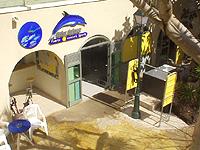 Tauchen auf Fuerteventura - Bild 33
