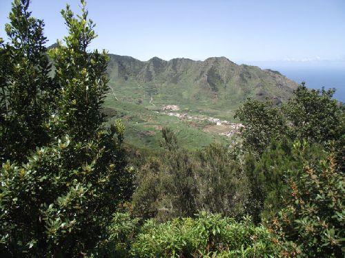 Wandern im Tenogebirge auf Tenerifa