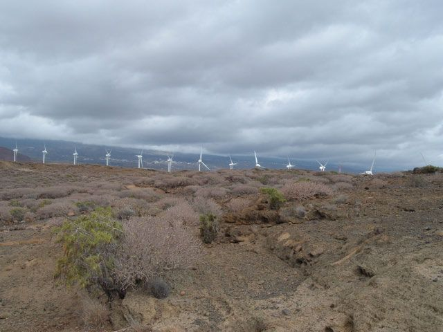 Windkrafträder von ITER vom Montana Pelada bei El Médano