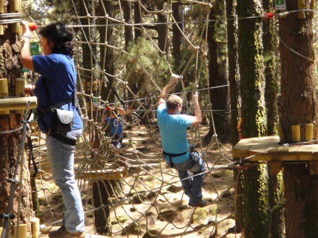 Forestal Park auf Teneriffa
