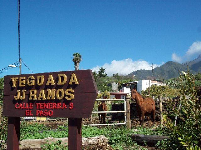Reiten auf La Palma mit Hufschmied Celin