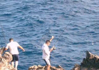 Wassersport auf Teneriffa - Angeln - Bild2