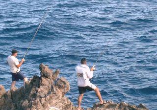 Wassersport auf Teneriffa - Angeln - Bild3