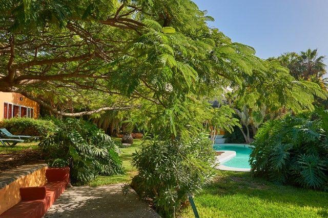 Finca Tazacorte - Casa Azafran 2 auf La Palma in Puerto Naos/Tazacorte