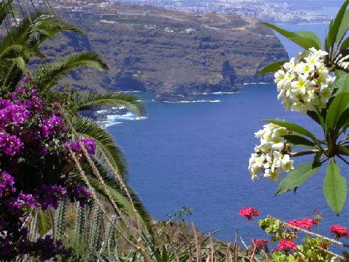 Grosses Anwesen am Meer - Wasserturm auf Teneriffa Nord in La Matanza