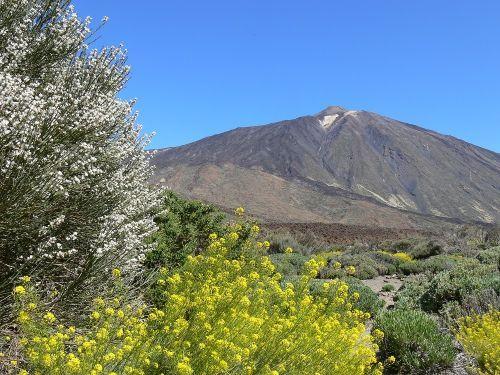 Wandern zum Teide, dem höchsten vberg Spaniens auf Teneriffa