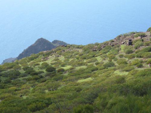 Wandern über den Guergues Steig auf Teneriffa