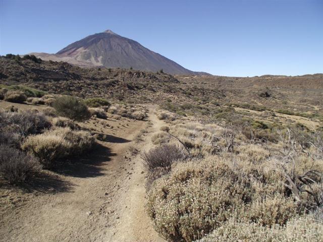 Arenas Negras im Teneriffa Nationalpark