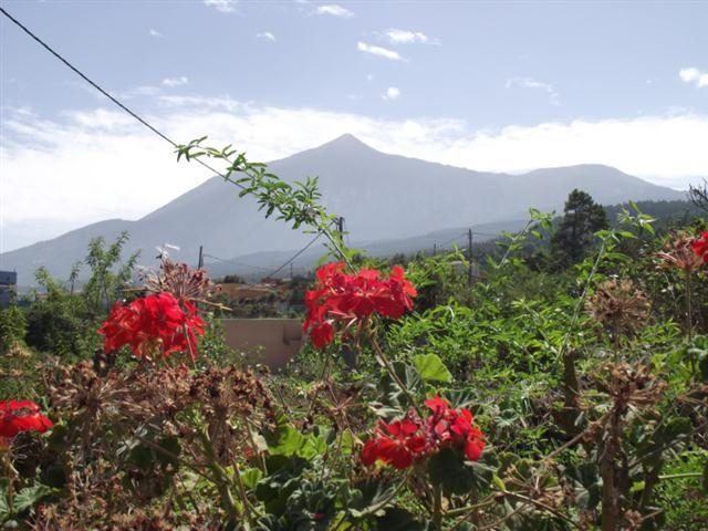 Blick zum Tedie in Las Abiertas auf Teneriffa