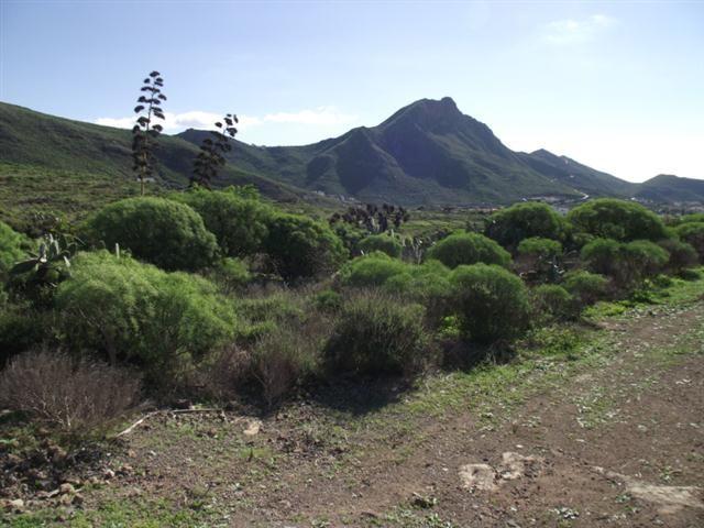 Blick auf Valle de San Lorenzo
