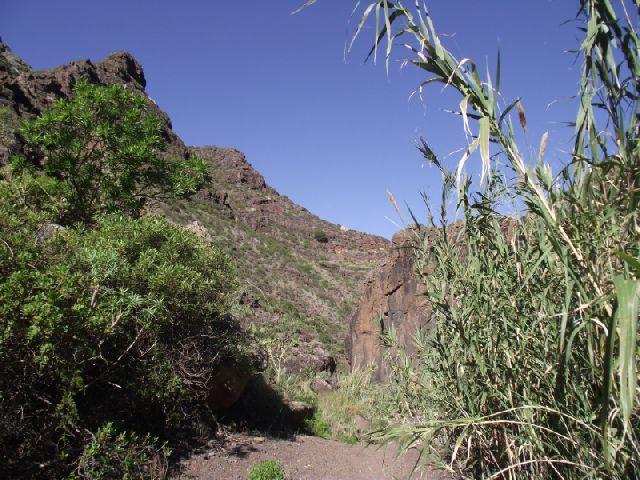 Teneriffa Wanderung - Barranco Afur