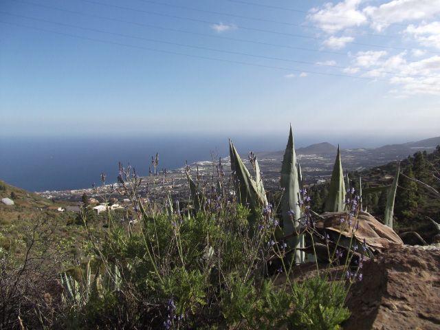 Blick auf Candelaria auf Teneriffa