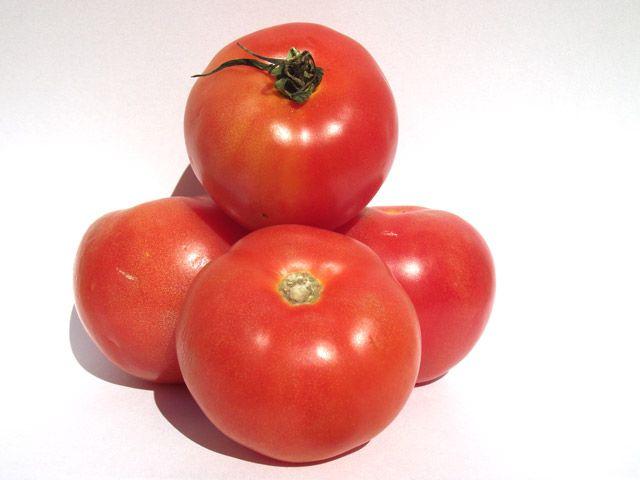 Kanarische Tomaten auf Teneriffa