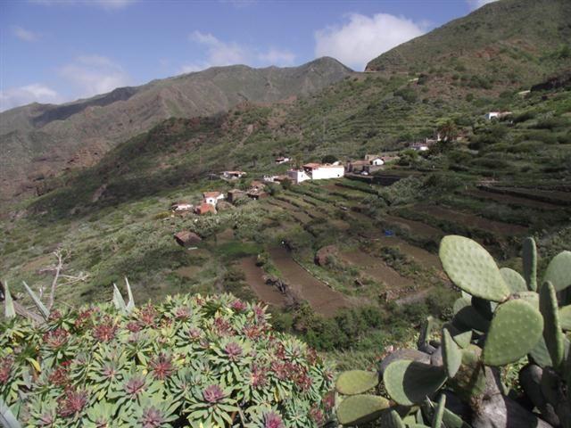 Teneriffa Wanderung - Los Carrizales